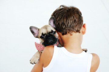 ormas divertidas de celebrar el cumpleaños de tu mascota