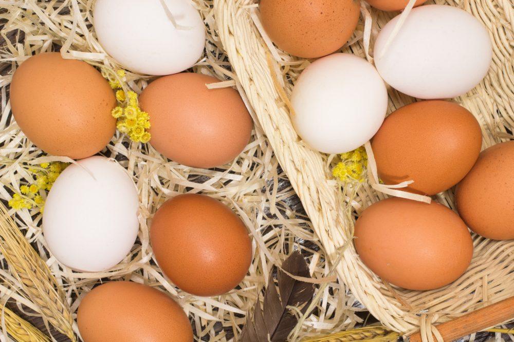 huevos marrones contra huevos blancos