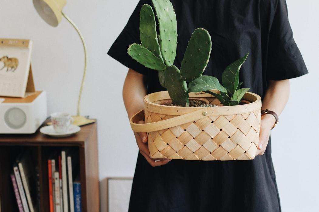 consejos para mejorar la apariencia de tu hogar