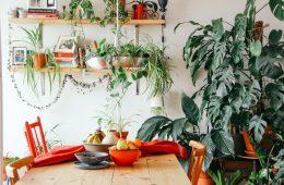 ideas económicas para transformar tu hogar