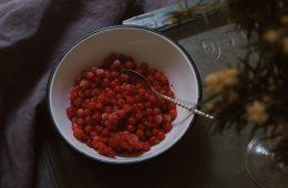 receta de salsa de arándanos