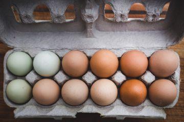 Comer huevos ayuda a rebajar