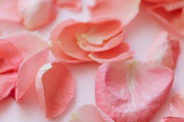 tónico facial con agua de rosas