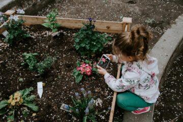 pasos fáciles para tener un lindo jardín